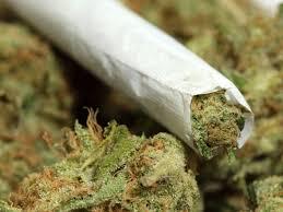 marijuana, una prospettiva spirituale